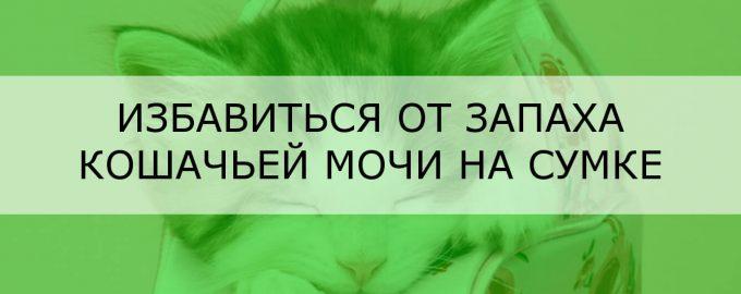 Избавиться от запаха кошачьей мочи на сумке
